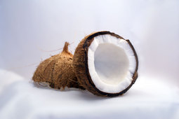 Could coconut kernels be the key to hydrogen-powered cars?