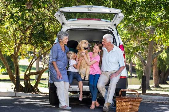 Is your car big enough to accommodate the grandkids?