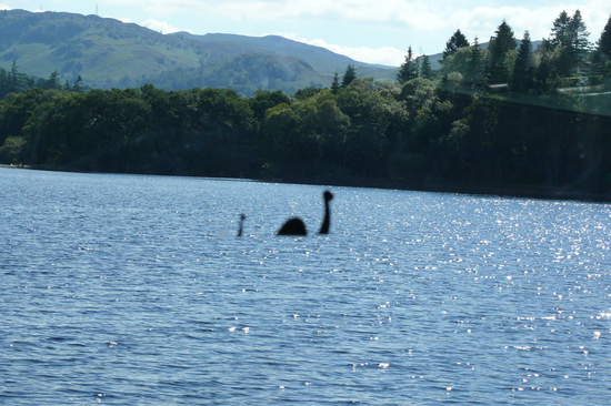 Take a leaf out of Nessie's book and cruise the waters of Loch Ness